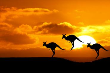 DISCOVERY-AUSTRALIA-VERNE-VIAGGI